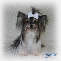 Justine5