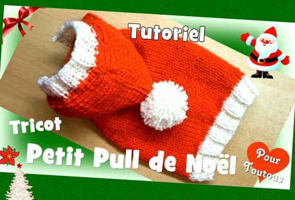 Comment tricoter un pull de Noël pour chiens