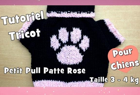 Tutoriel Tricot: Petit Pull patte rose, pour chiens de taille moyenne (3-4kg)