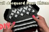 Tutoriel Tricot: Petit Pull Jacquard pour chiens