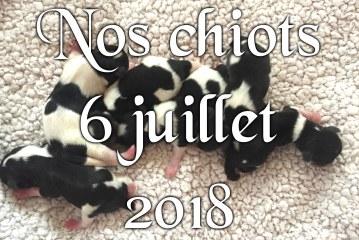 Bébés juillet 2018