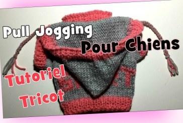 Tutoriel Tricot: Pull Jogging pour Chiens DIY