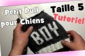 DIY Tricot: Petit Pull pour chiens de' 2,8 kg à 3,2 kg (taille 5) Tutoriel
