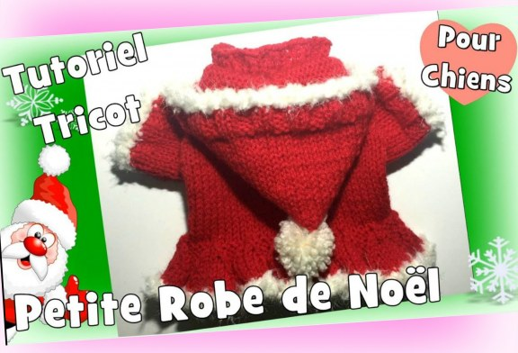 Tutoriel Tricot: Petite Robe de Noël pour petits chiens