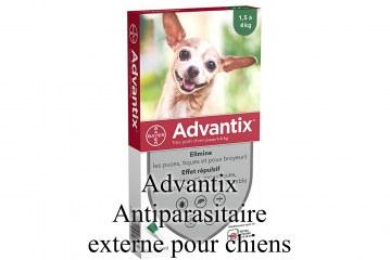 Advantix Antiparasitaire externe pour chiens